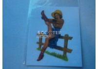 Sticker pin up cowboy
